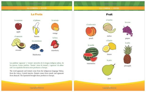 Mi primer libro bilingue
