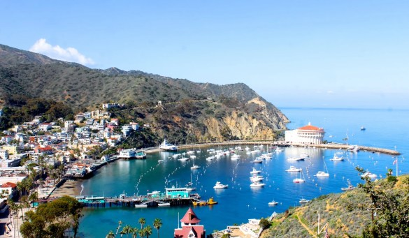 Santa Catalina Island Avalon harbor
