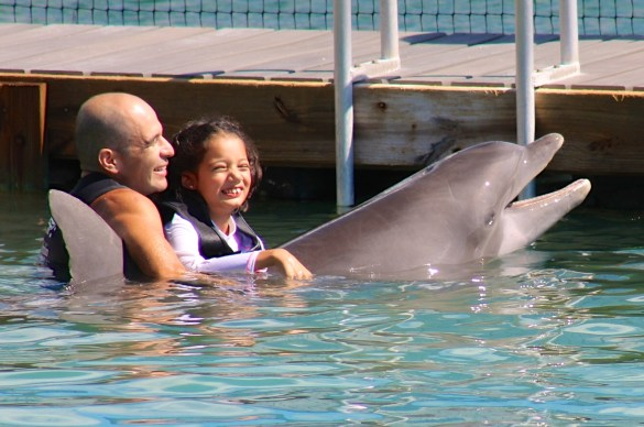 Swimming with dolphins at Hawk's Cay