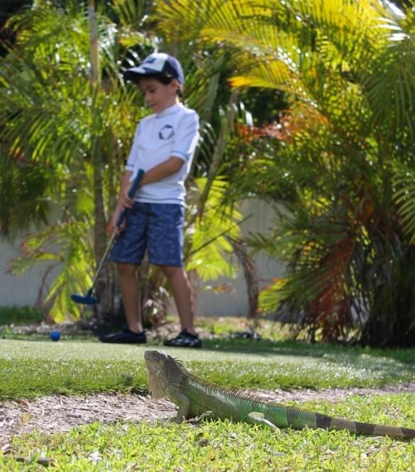 Hawks Cay mini golf course.