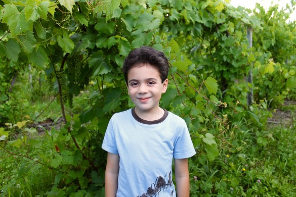 Visiting the Finger Lakes wineries with kids