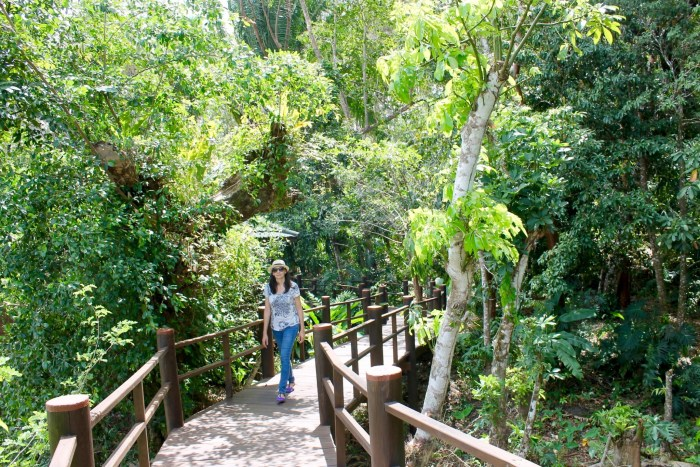 walkway along the jungle at Las Lagunas hotel Guatemala