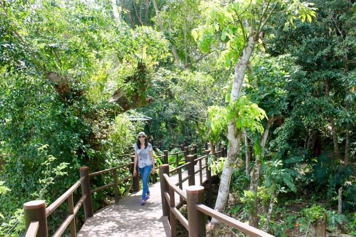 walkway along the jungle at Las Lagunas hotel Guatemala