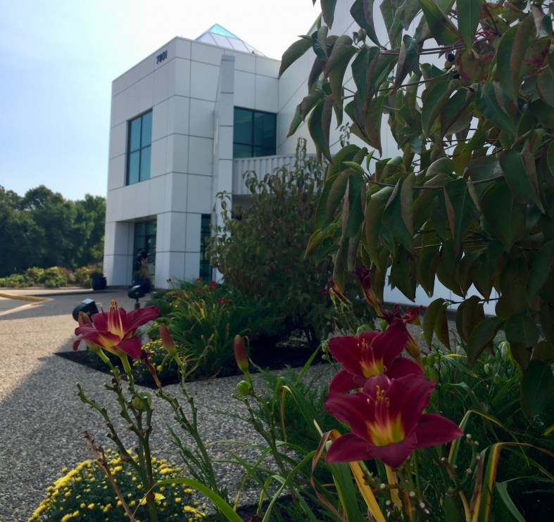 Paisly Park, Prince's home and recording studio