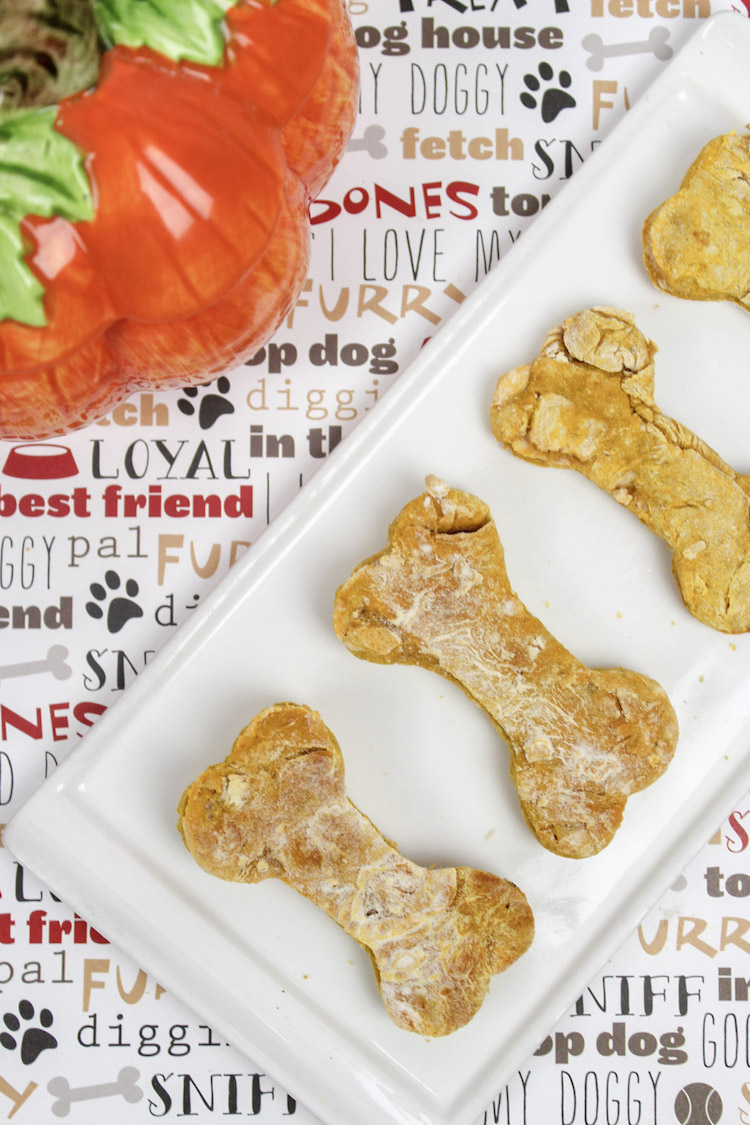 Apple Pumpkin Dog Biscuits and lots of ideas and recipes to celebrate your dog's birthday