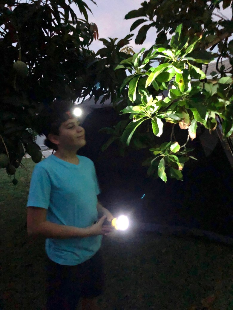 Fun Flashlight Games To Do While Camping or Anytime