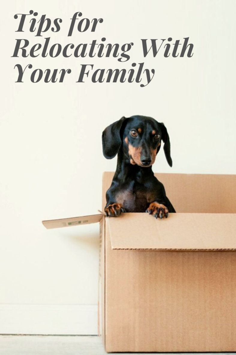 Tips for Relocating Wtih Your Family