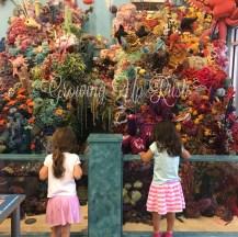 Children's museum trip.