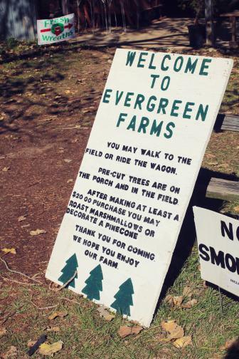 2018 Evergreen Tree Farm (1)