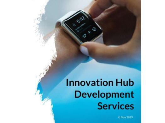 Innovation Hub Development Services