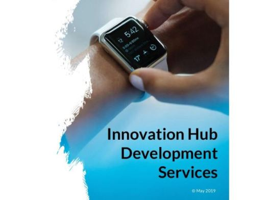 Innovation Hub Development Services