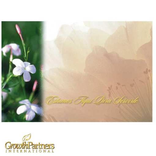 spanish wildflower post card