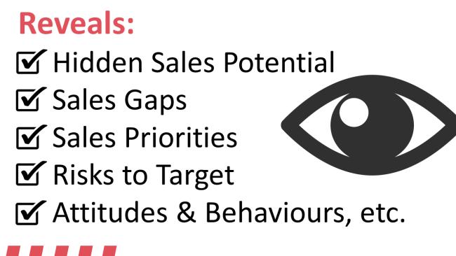 key sales performance accelerators/inhibitors