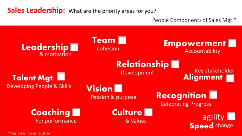 sales leadership - the ingredients