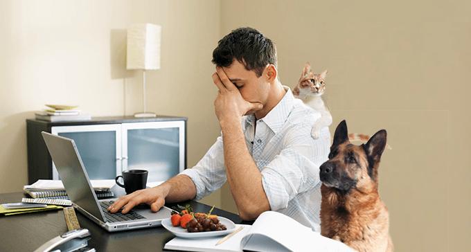7 razones de por qué el Coworking es perfecto para el verano