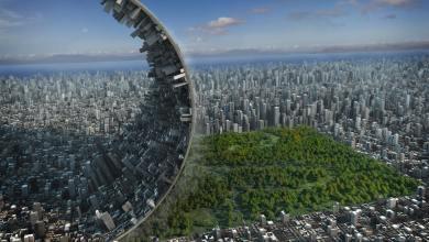 Photo de Qu'est-ce que l'écologie urbaine ?