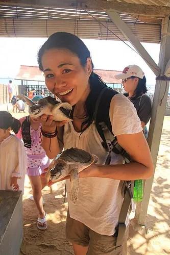 christine kaaloa turtles