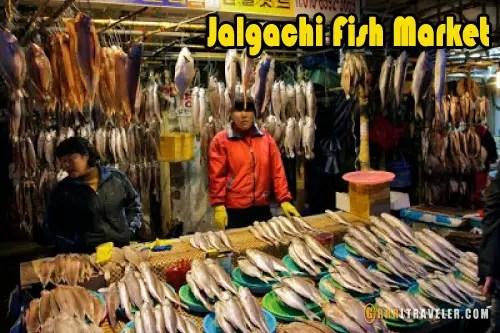 Jalgachi Fish market korea grrrltraveler, big fish market busan, best markets in korea