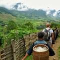 sapa valley trekking, trekking sapa, trekking in vietnam, trekking tours vietnam, sapa homestay, tavaan village homestay, hmong village sapa valley