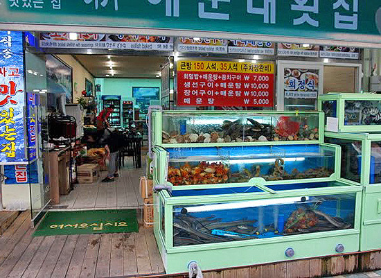 scary asian foods, traditional markets in korea, fear factor foods, traditional market restaurants, fish restaurants, seafood restaurants in korea, jalgachi fish market