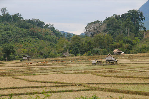top photography Laos