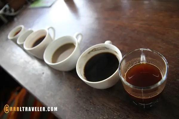 balinese coffee, kopi luwak, expensive coffee in bali, expensive poop coffee
