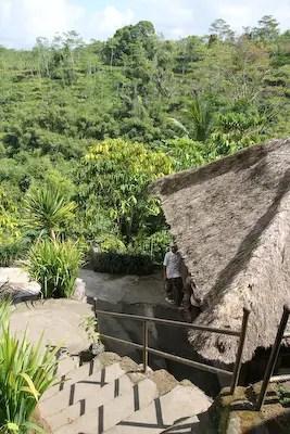 temen coffee plantation bali