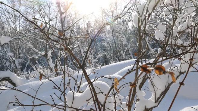 Jilin Winter Festival, jilin winter wonderland, jilin china