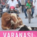 Varanasi Culture Shock, Varanasi Arrival Tips