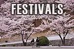 korea festivals, festivals in korea