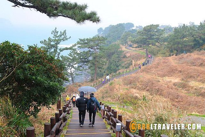 Olle trails in Jeju, hiking in korea, hiking in jeju, hiking trails jeju island sightseeing map, what to do in jeju island, what to see in jeju