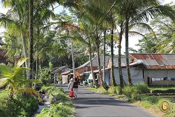 bali country, balinese countryside
