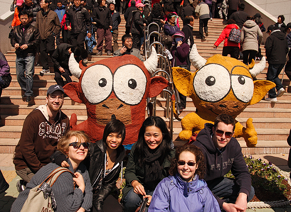 How to Make Friends Traveling Alone, solo travel tips for women, solo travel tips, how to make friends when you travel alone, epik Korea, bullfighting festival in Korea