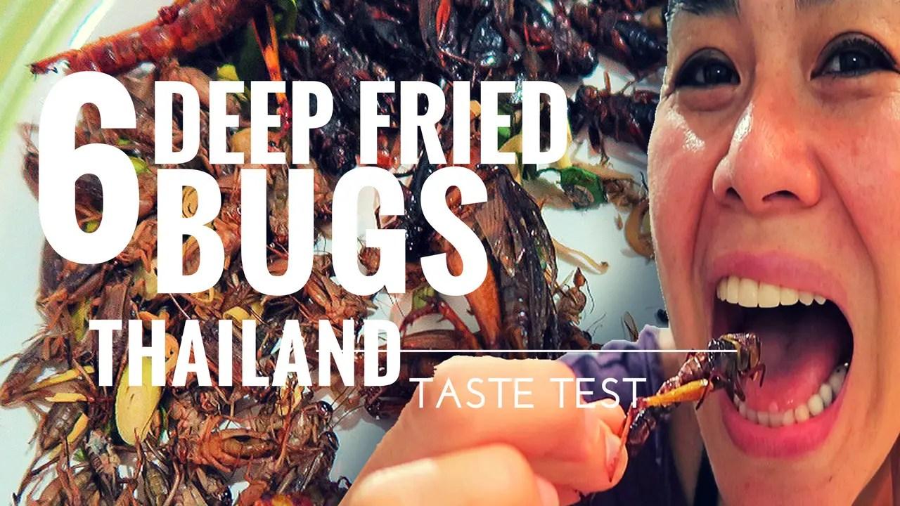 deep fried bug taste test thailand