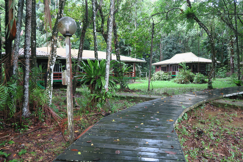 Bako National Park, Bako National Park accommodations, what to do in kuching, what to do in sarawak