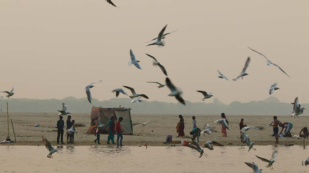 Ganges River Boat Cruise, Varanasi Travel Guide