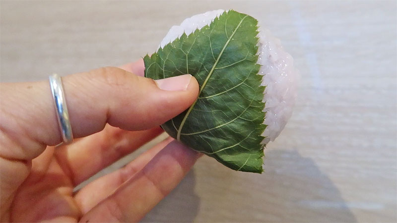 sakura mochi, top 10 sakura sweets, top 10 sakura snacks, 10 must try sakura snacks