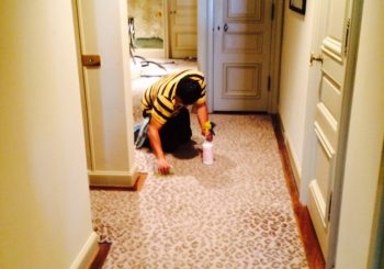 Mansion Remodeling Custom Cleaning Service in Highland Park TX 18 d97331dd8c7cd15e1f0a895e3ce7f0f2 350x245 100 crop Mansion Remodeling Custom Cleaning Service in Highland Park, TX