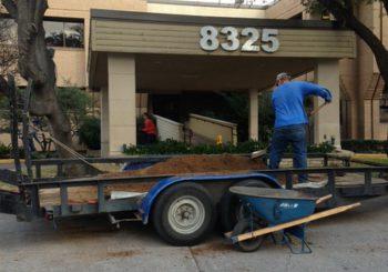 Post Construction on Walnut Street Lane 01 bc41c8d2f258b3084fcf5f64eebf3430 350x245 100 crop Dental Clinic   Post Construction Clean Up on Walnut Street in Dallas, TX
