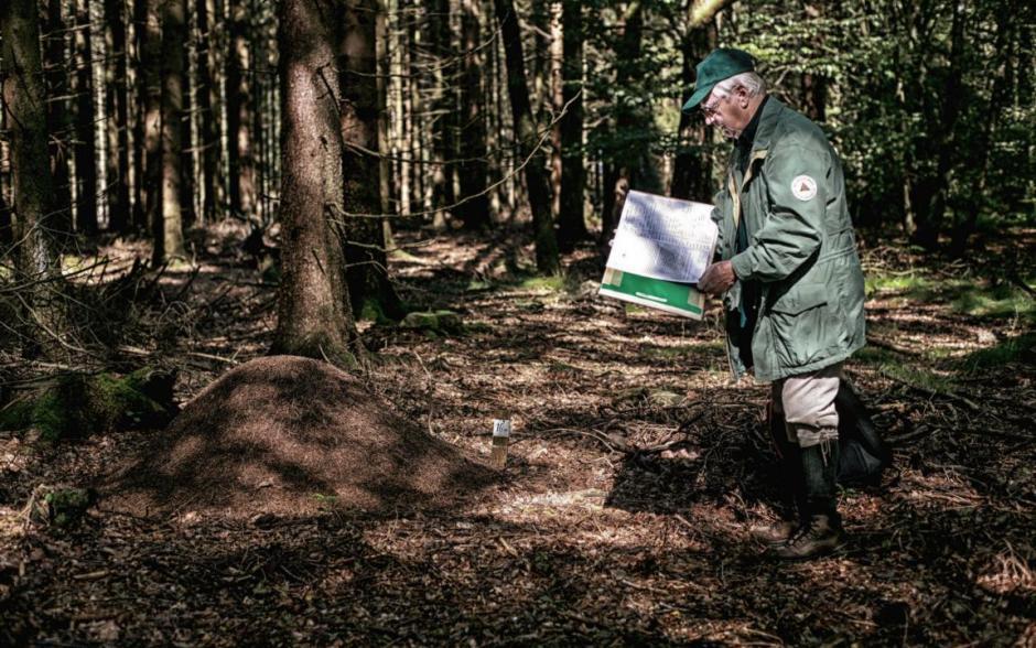 Ameisenheger Peter Fischer beim Kartografieren