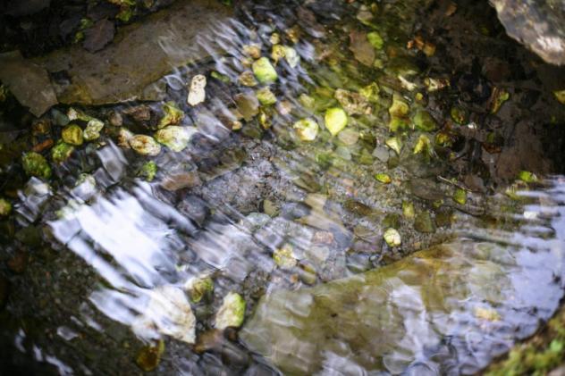Erfrischung mit Trinkwasserqualität