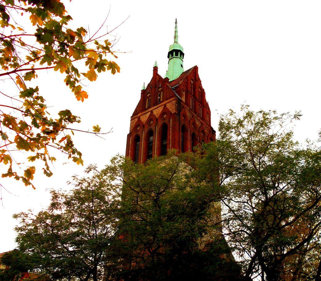 Kirche hinter Bäumen