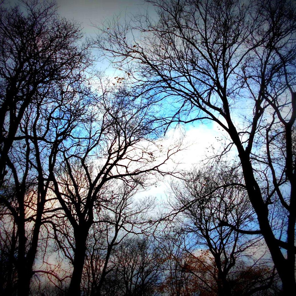 Siehe da, Blauer Himmel