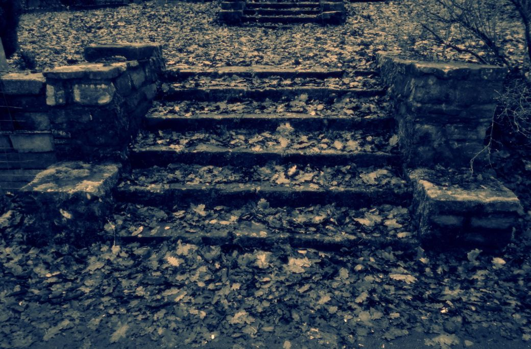 Treppenstufen unter Laub