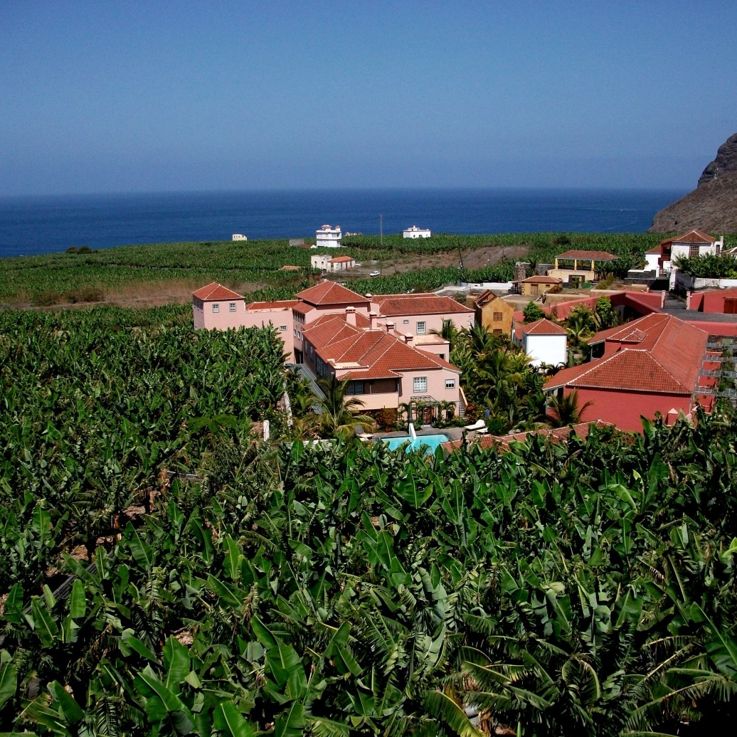 La Palma Bananenparadies