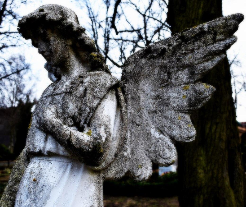 Engel von vorne