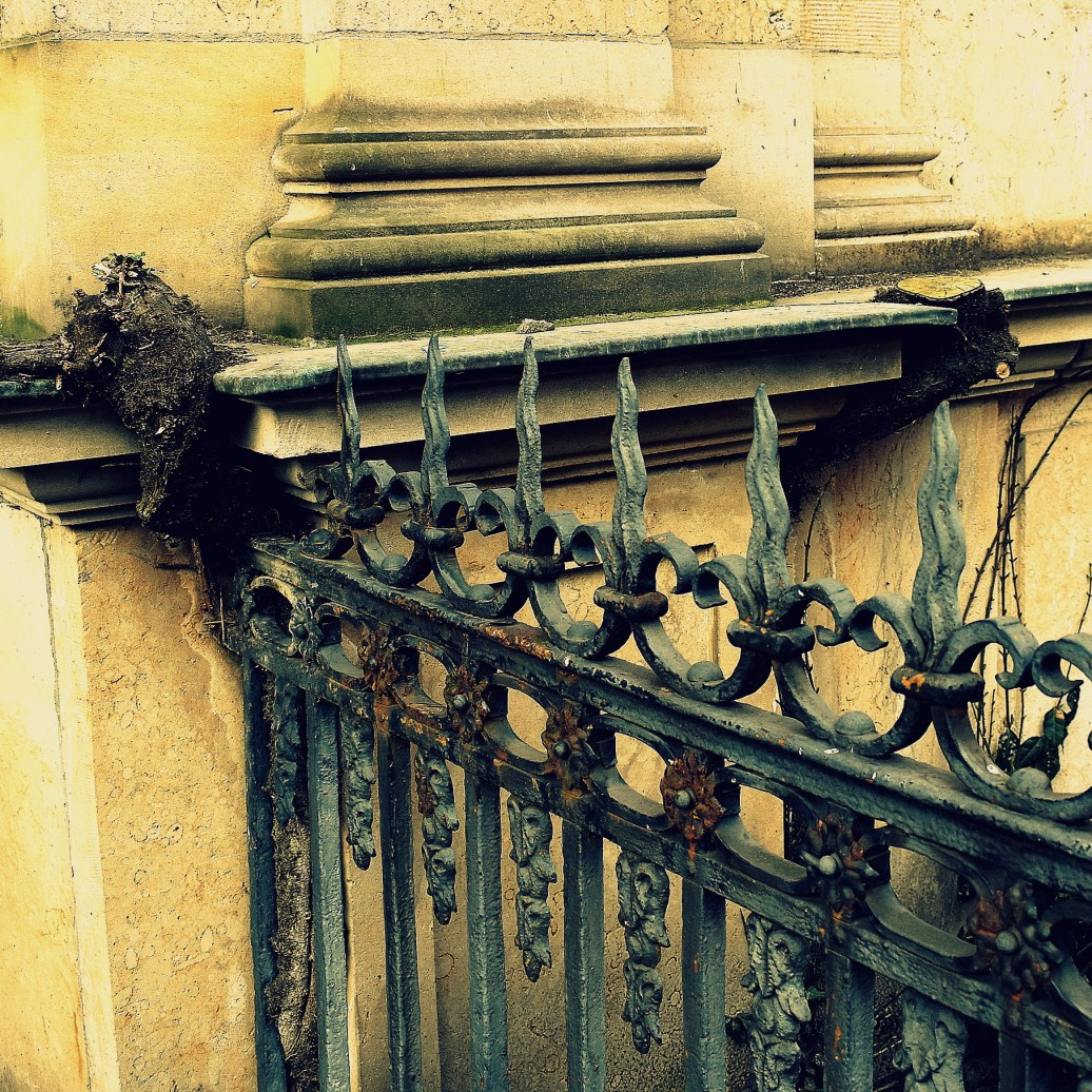 Mit Zaun und Mauer verwachsen