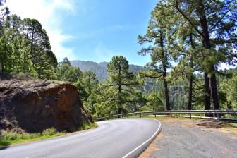 Straße nach Puntagorda