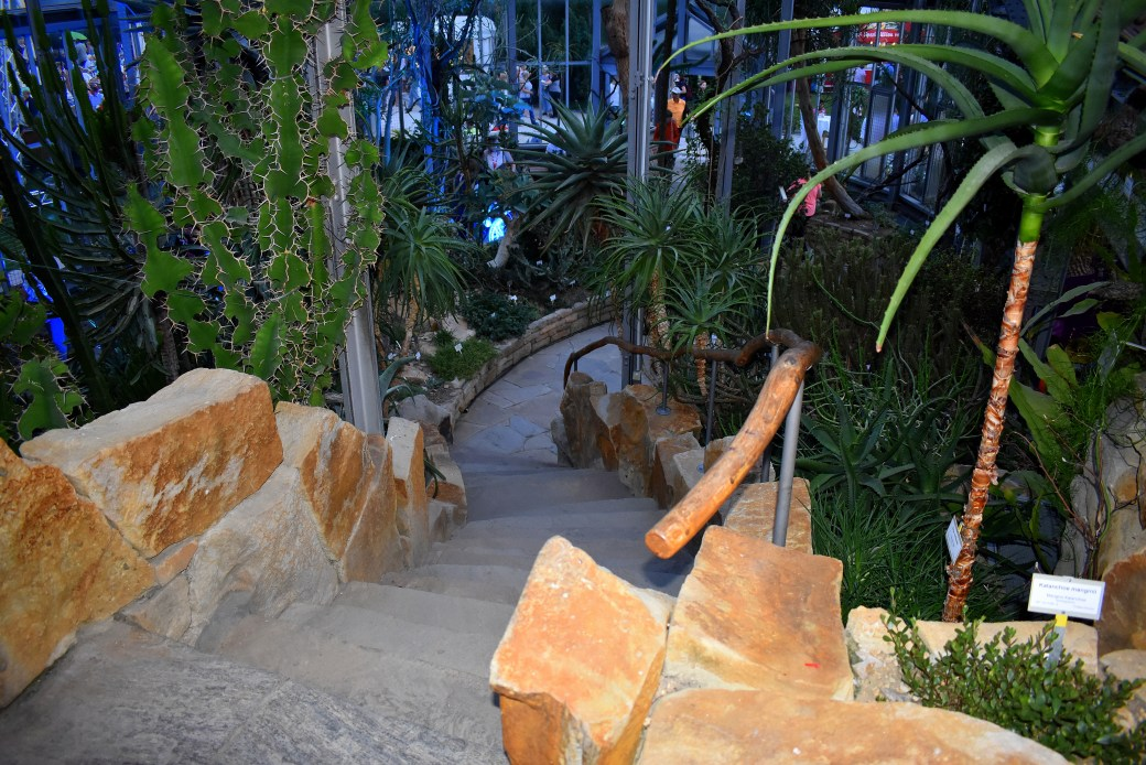 Tropenhaus Botanischer Garten