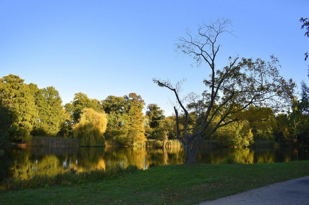 Landschaft Sanssouci 2